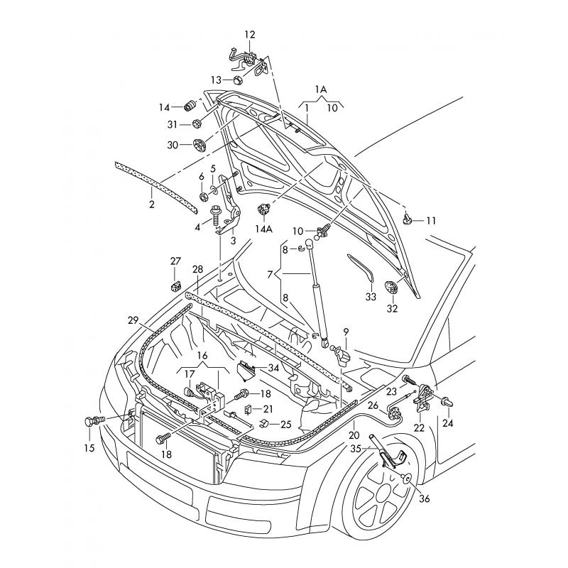 Slammed Audi B6